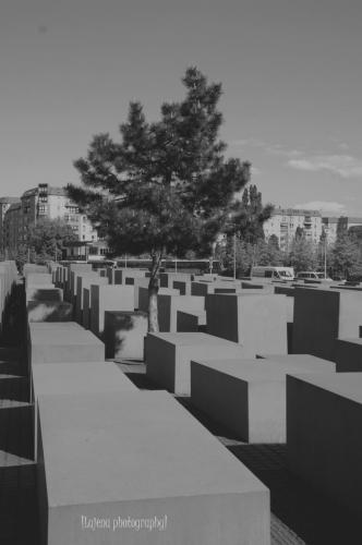 Mémorial de l'holocauste 2